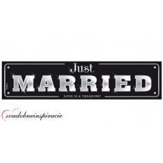 """Svadobná ŠPZ  """"JUST MARRIED"""""""
