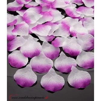 Lupene ruží - bielo-fialové