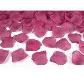 Lupene ruží - fuchsia
