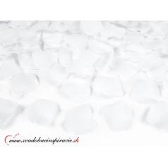Lupene ruží - biele